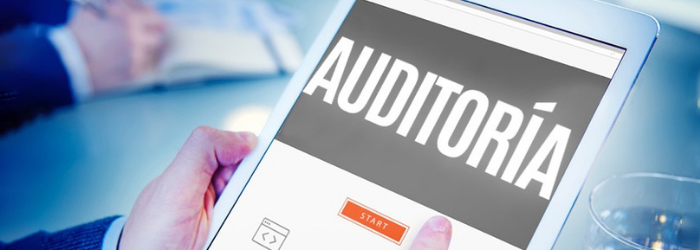 que-es-auditoria-electronica-comercio-exterior